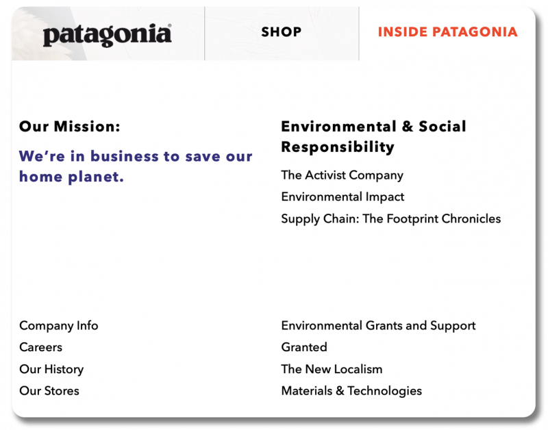 Screenshot of Patagonia's site, with a navigational tab dedicated to their environmental work