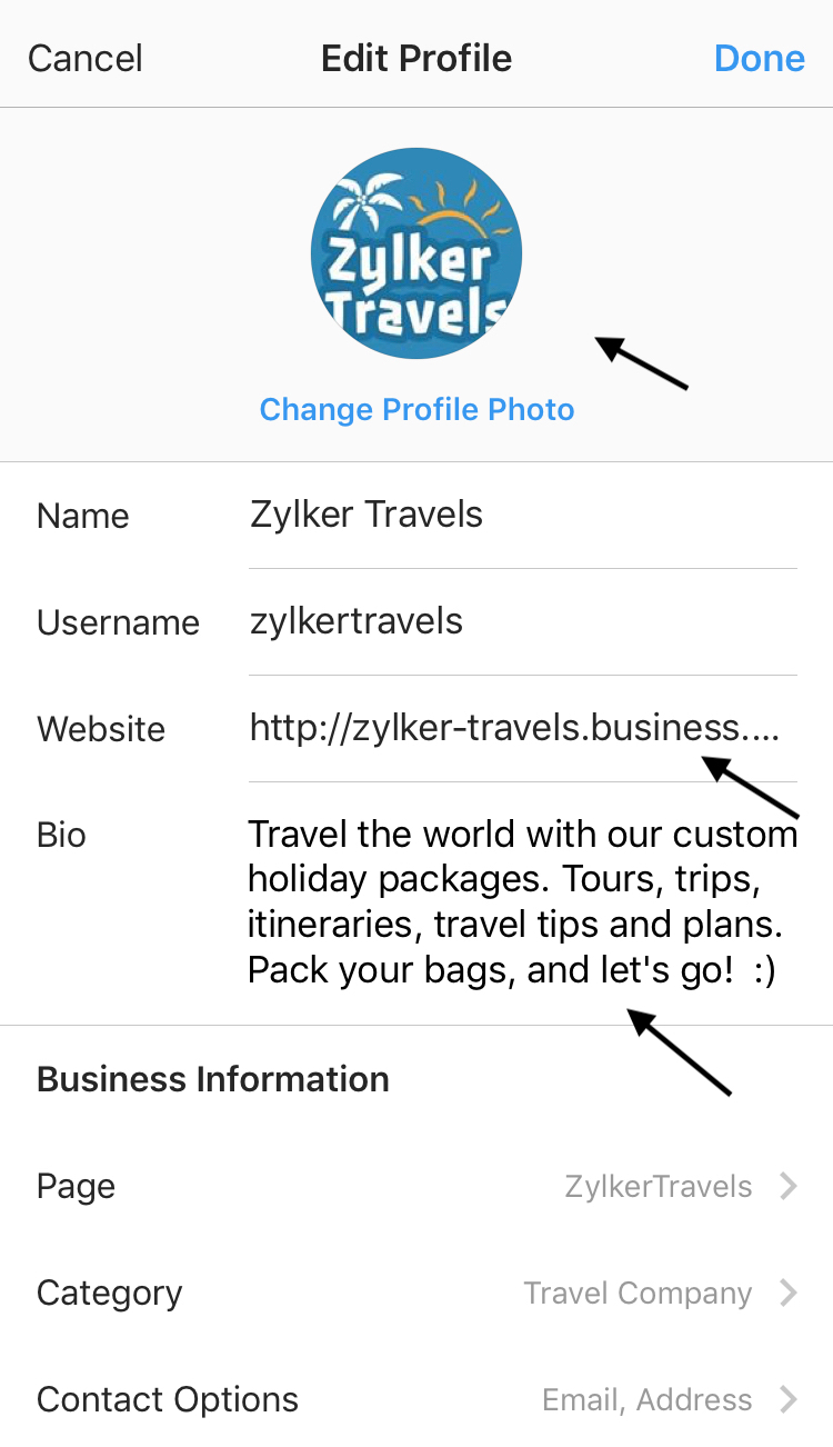 Screenshot of the interface that lets you edit an Instagram profile for a business