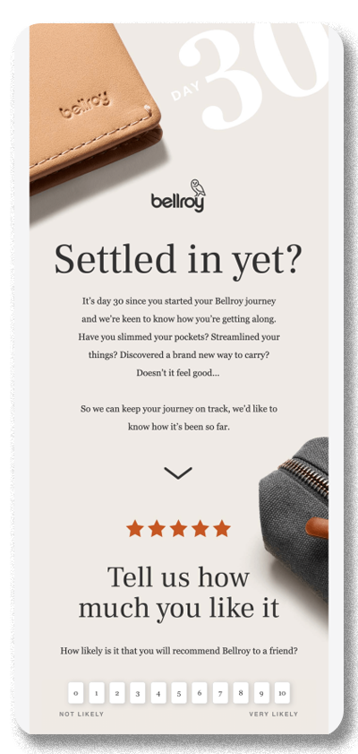 Screenshot of an email campaign from Bellroy, aimed at encouraging the reader to take a survey